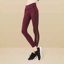 女式网纱运动裤